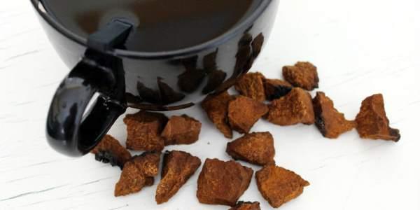 чашка чая из чаги