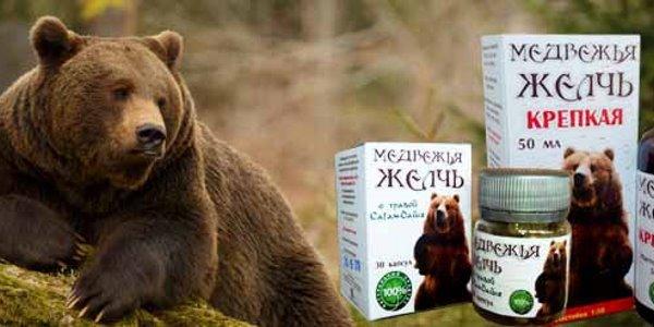 Медведь и желчь
