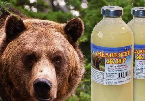 Медвежий жир