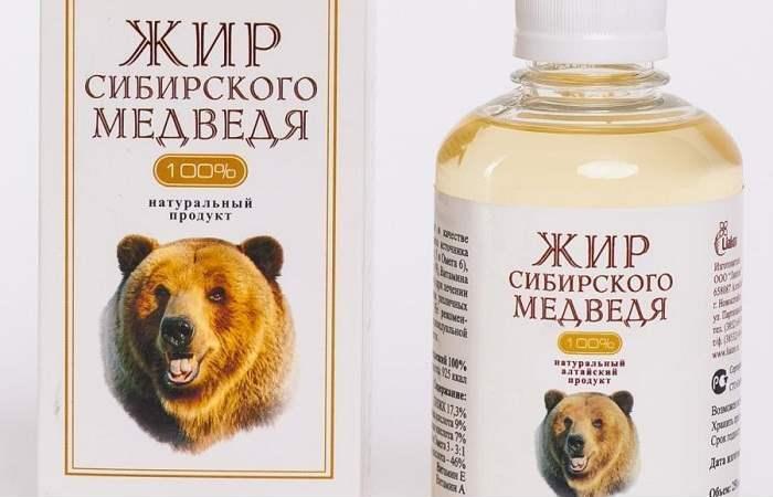 Применение медвежьего жира в лечебных целях